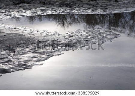 Bare trees with a cloudy sky reflected in a calm river channel with patterns in the sand. - stock photo