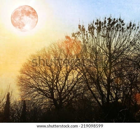 Bare trees with full moon. - stock photo