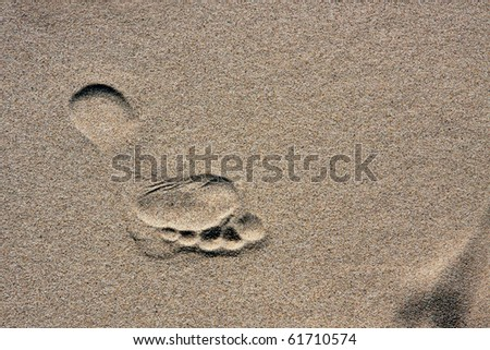 barefoot footprint on a sand - stock photo