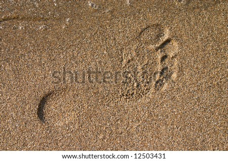 barefoot print on the sand at sea coast - stock photo