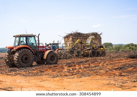 Bariri, Sao Paulo, Brazil, October 10, 2008. A tractor with a lifting claw loading a truck with sugar cane