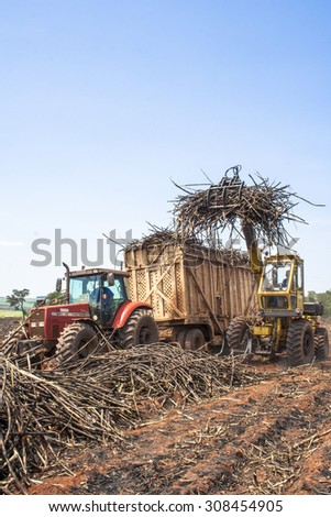 Bariri, Sao Paulo, Brazil, October 10, 2008. A tractor with a lifting claw loading a truck with sugar cane - stock photo
