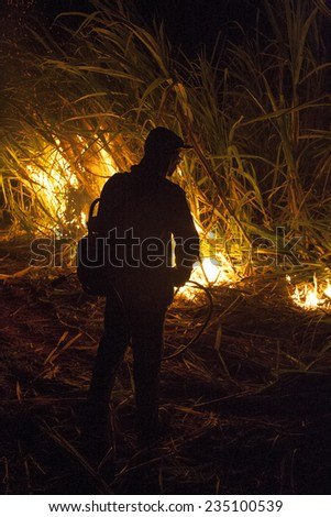 Bariri, Sao Paulo, Brazil, October 09, 2008. Sugar cane burned by farmer for pre-harvest in Brazil