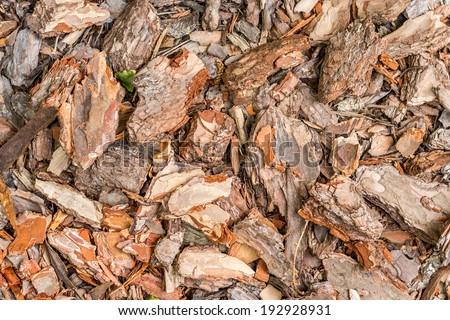 Bark garden pattern - stock photo