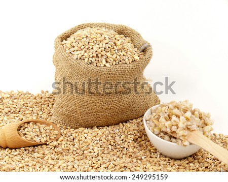 barley - stock photo