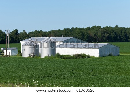 Barn and Silo Complex A small barn and a pair of grain silos surrounded by a soybean crop on a family farm in rural Ohio - stock photo