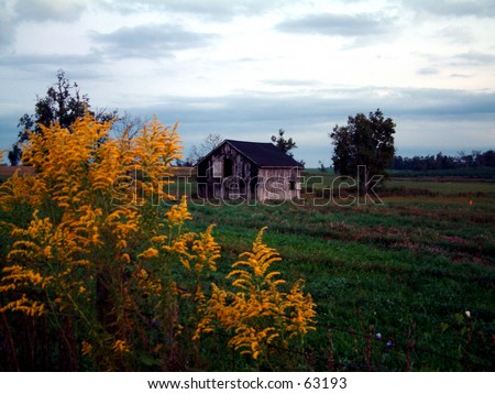 Barn in a field - stock photo