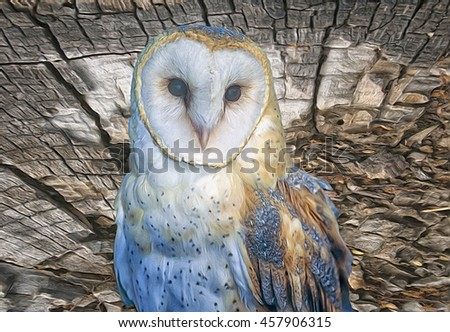 Barn owl isolated against textured wood background.Photo art