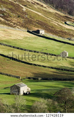 Barns and field patterns in upper Swaledale, UK - stock photo