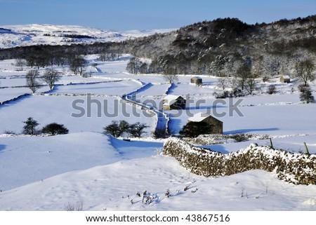 Barns and walls at Grassington, Yorkshire dales. - stock photo