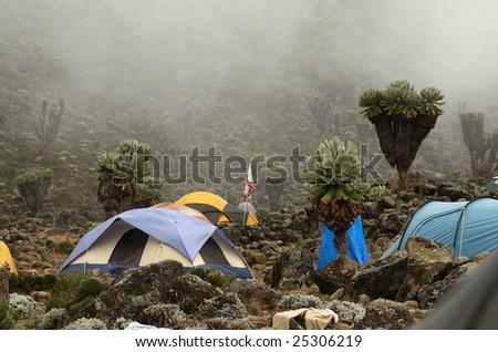 Barranco camp on Machame route. Mount Kilimanjaro, Tanzania. - stock photo