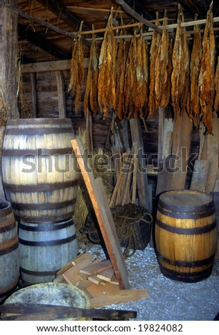 Barrel makers shop and drying tobacco,Williamsburg,Virginia, - stock photo