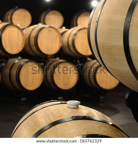 Barrels in a modern winery