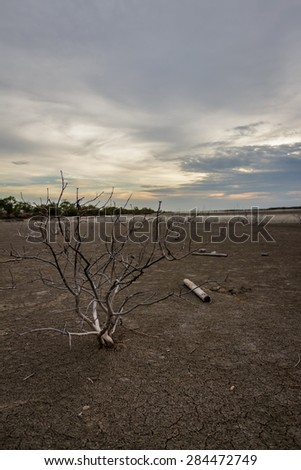 Barren ground sunset - stock photo