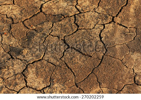 barren land - stock photo