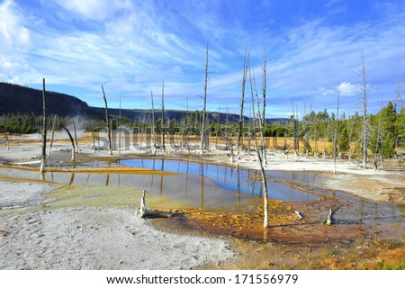 barren sulphurous landscape created by volcanic activity yellowstone national park, wyoming, united states - stock photo
