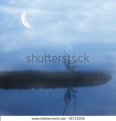 Barren tree reflecting in pond with new moon shining through the fog - stock photo