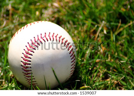 baseball in the grass and sun