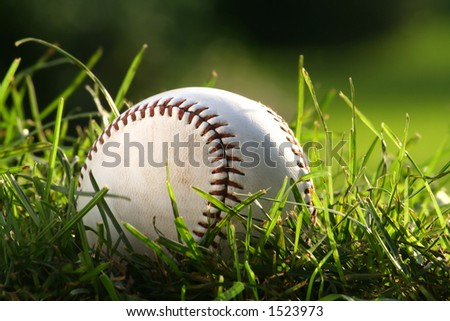 Baseball in the tall grass