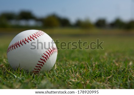 Baseball on the Outfield Grass Close up - stock photo