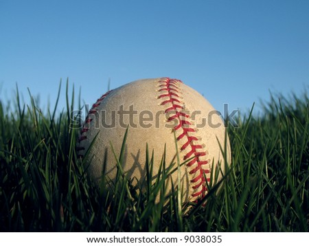 Baseball resting in thick green grass 7 of 7 in series - stock photo