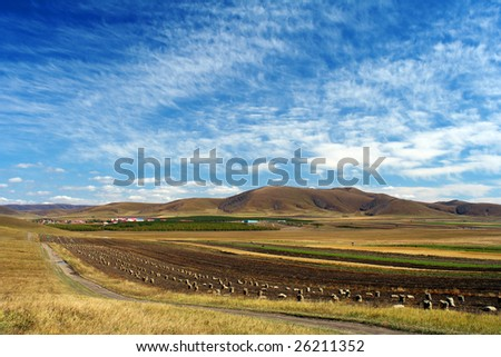 Bashang grassland in summer,good harvest,fresh air - stock photo