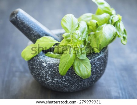 Basil Aromatic Herb in a Mortar with Pistil Making Pesto Sauce - stock photo