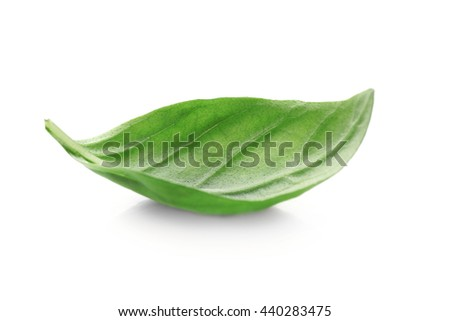 Basil leaf, isolated on white - stock photo