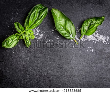 Basil leaves and salt on black slate, food background with copy space - stock photo