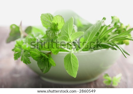 basil, mint,parsley,rosemary,thyme