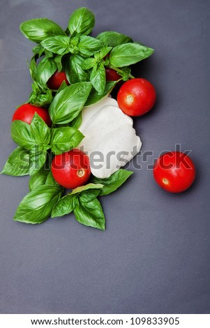 Basil, mozzarella and tomatoes are basical ingredients for a lot of dishes - stock photo