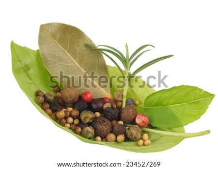 basil's leaf with spices on white background - stock photo