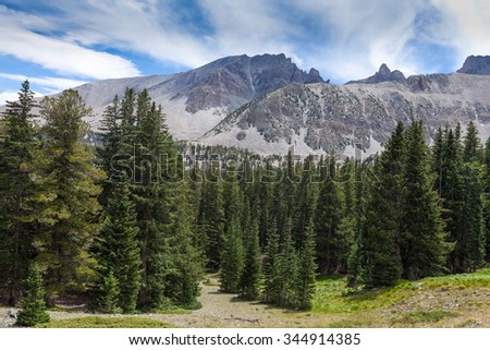 Basin National Park-Wheeler Peak Trail- Wheeler Peak  at 13000 ft. is quite a strenuous trek through pine forests, meadows, steep, loose rock areas, lots of wind, and very cold. - stock photo
