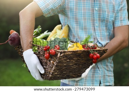 Basket filled fresh vegetables in hands of a man wearing gloves - stock photo