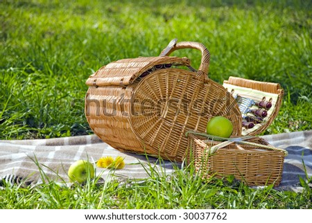 basket for the picnic with dandelions on the plaid - stock photo