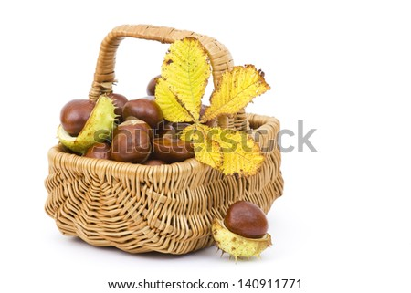 basket full of chestnuts and autumnal leaves - stock photo