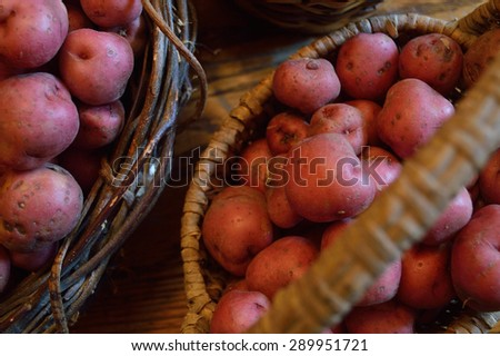 Basket full of fresh new potatoes, locally grown in Florida. Fresh produce in basket, red-skinned new potatoes, raw with skins still on. - stock photo