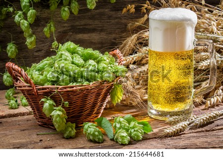 Basket full of hops and a cold beer - stock photo