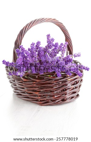 basket full of lavende - flowers and plants - stock photo
