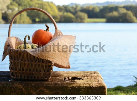 Basket lined with burlap, filled with small pumpkins on a rustic bench by a pond - stock photo