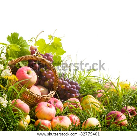 basket of apples and grapes on the green grass - stock photo