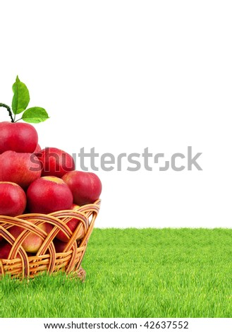 Basket of apples isolated on a white background - stock photo