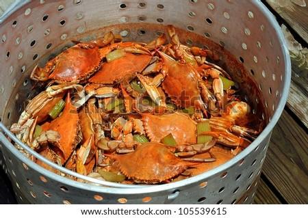 how to eat louisiana blue crab