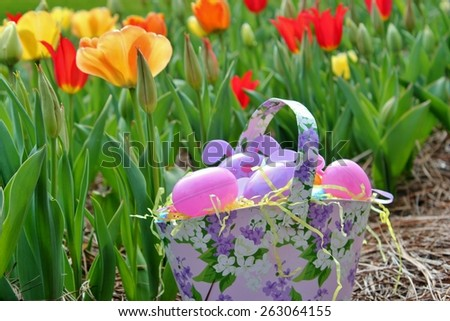 Basket of Easter eggs in a bed of tulips