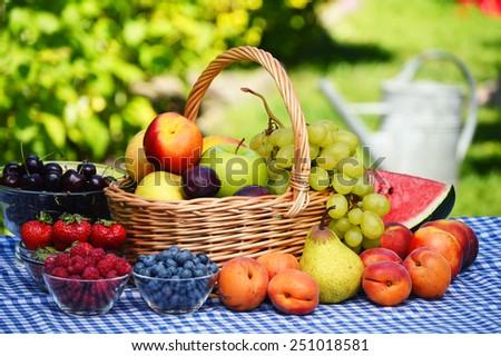 Basket of fresh organic fruits in the garden - stock photo