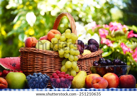 Basket of fresh organic fruits in the garden - stock photo
