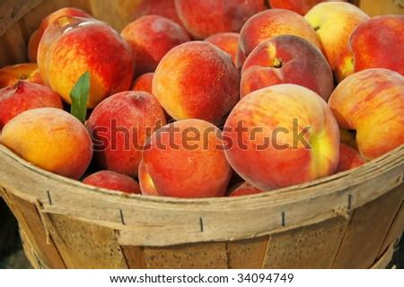 Basket of Fresh Peaches - stock photo
