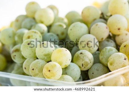 Basket of fresh picked green grapes from a vineyard in east Tennessee