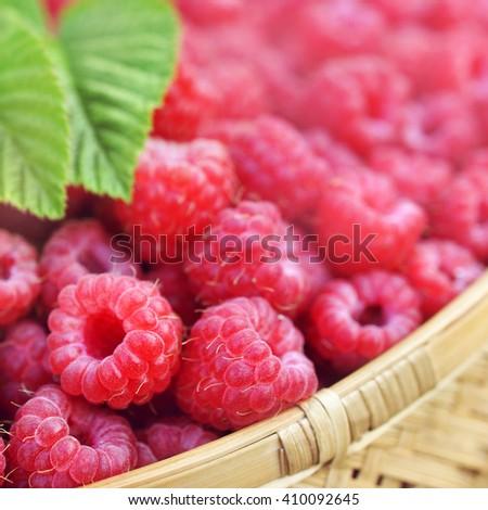 Basket of fresh ripe sweet raspberries, selective focus - stock photo