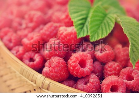 Basket of fresh ripe sweet raspberries, selective focus, toned - stock photo